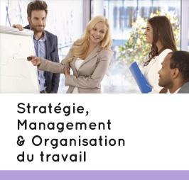 Pôle stratégie management & organisation du travail