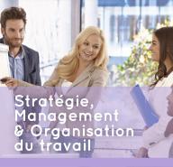 Pôle stratégie, management et organisation du travail